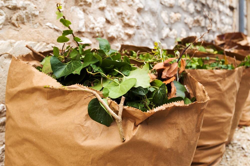 Report de la distribution des sacs à déchets végétaux/Covid-19